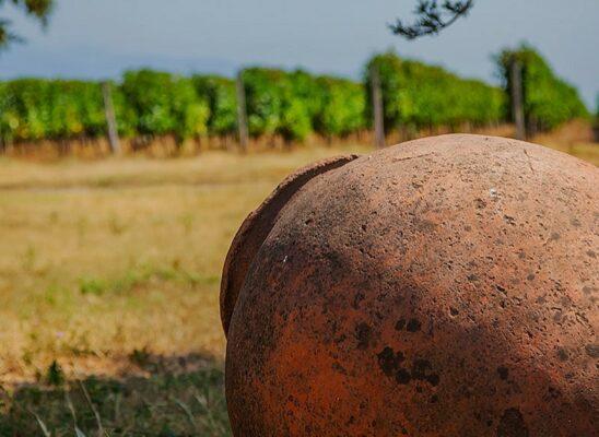 winery-khareba-02